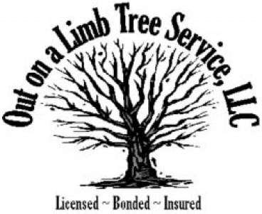 Out On A Limb Tree Service - 25 off any Tree Care or Pruning 38 Fruit Tree Pruning