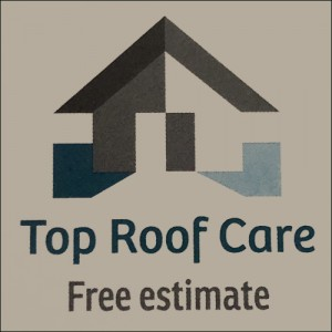 100 Off Roof Services