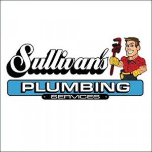 30 Off Plumbing Services