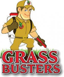 Grass Busters - 110 TOTAL LAWN CARE A Month