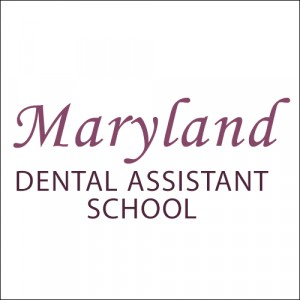 25 00 off Dental Xray Cert Course