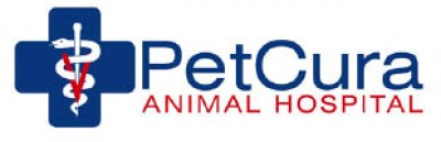 PetCura Animal Hospital - FREE EXAM 49 Value - For New Clients Valid from 7am to 7pm only