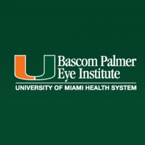 Bascom Palmer Eye Institute 900 Nw 17th St Miami Fl