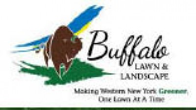 Buffalo Lawn And Landscape - FREE Treatment - With Purchase of Our 6-Treatment Lawn Care Program