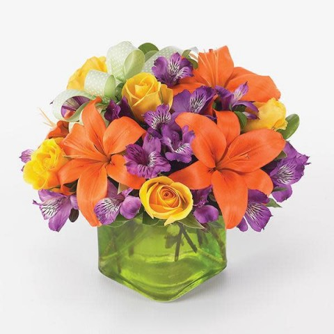 Vna Flowers Gifts