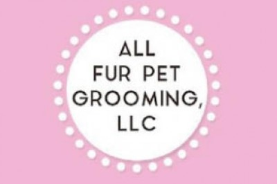 All Fur Pet Grooming - 5 OFF Any Grooming Service OR FREE Teeth Brushing - Pet Services