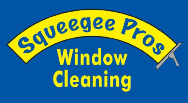 Squeegee Pros Inc