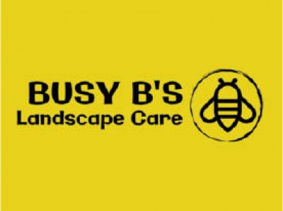 Busy B39 s Landscape Care - 50 Off Any 500 Landscaping Service
