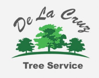 De La Cruz Tree Service - 50 OFF Any Service Of 500 Or More