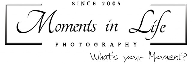 Moments In Life Photography
