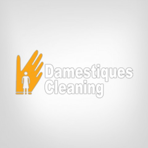 Damestiques Cleaning