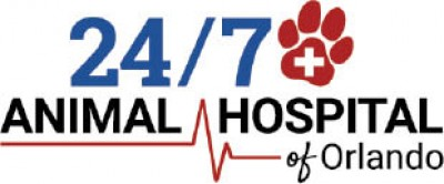 247 Animal Hospital of Orlando - 100 Canine Annual Package Special