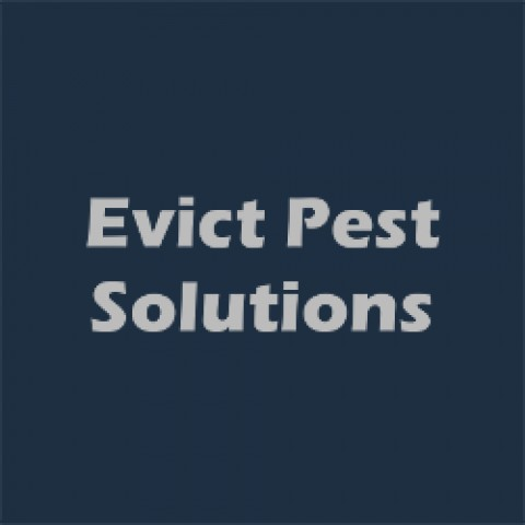 Evict Pest Solutions LLC